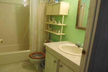6809 Orlo Dr.  Ensuite  Bathroom